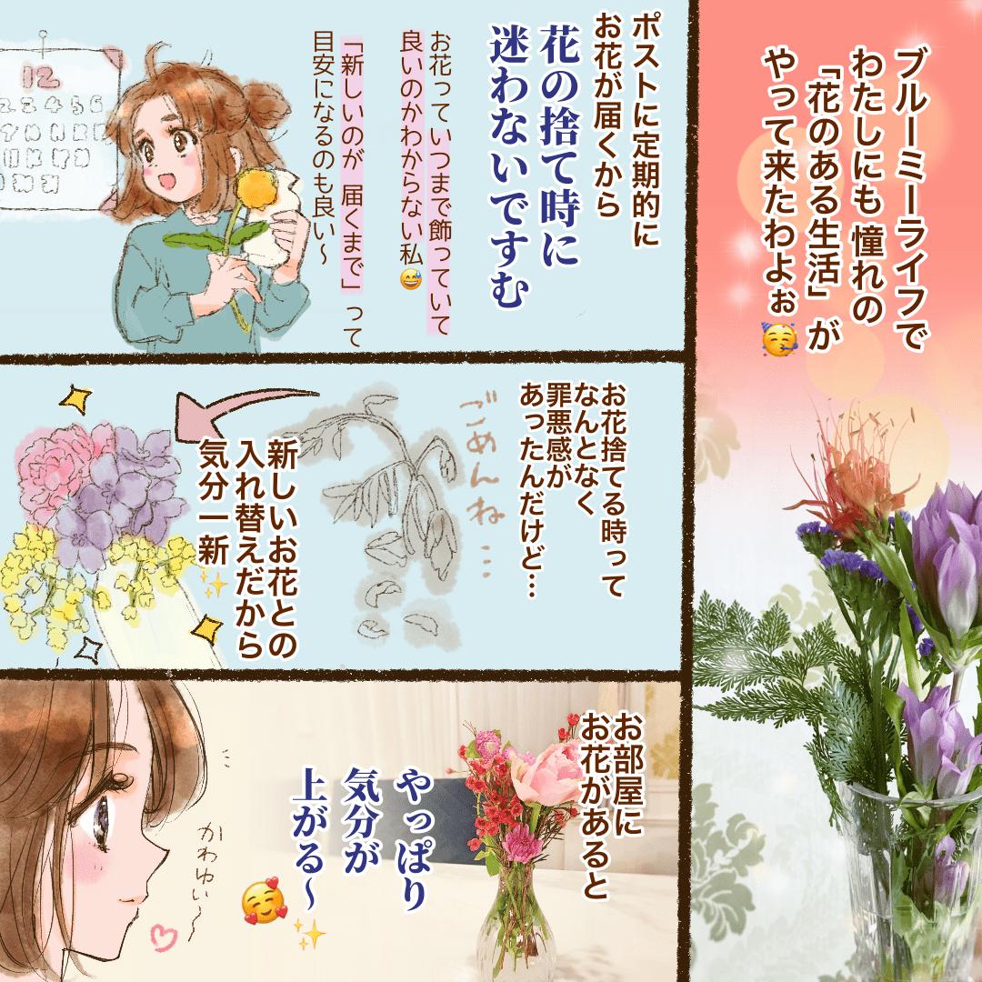 ポストに届くお花ブルーミーライフなら花の捨て時に悩まないで済む! お花が枯れていくのがさみしいし、捨て時に悩むのは私だけ?